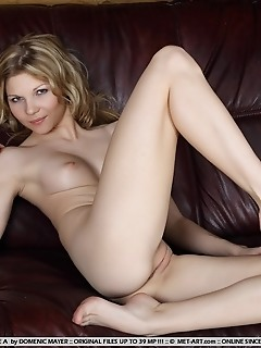 Charming blonde with pink, smooth bits and wide open poses.