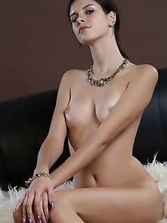 Elegantly beautiful brunette with long, slender body, and perky assets.